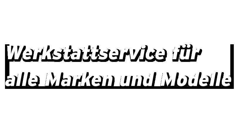 Werkstatt Service alle Marken und Modelle